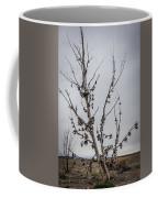 Shoe Tree Coffee Mug