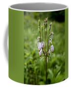 Shooting Star Flower - Wisconsin Coffee Mug
