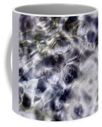 Shore Bubbles  Coffee Mug