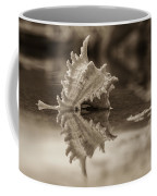 Shore Shell In Sepia Coffee Mug
