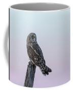 Short-eared Owl 2018-5 Coffee Mug