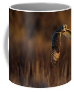 Short-eared Owl Banking Coffee Mug