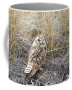 Short Eared Owl Coffee Mug by Michael Chatt
