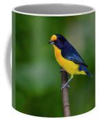 Short Round Coffee Mug
