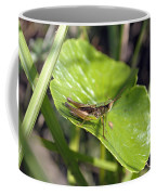 Short Winged Green Grasshopper Coffee Mug