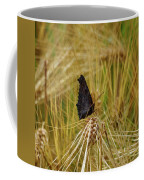 Showing The Dark Side. European Peacock On Barley Coffee Mug
