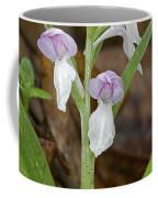Showy Orchis Coffee Mug