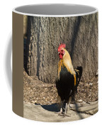 Showy Rooster Posed Coffee Mug
