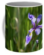 Shreve's Iris Coffee Mug
