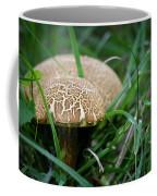 Shrooms Hiding Coffee Mug