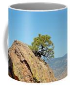 Shrub And Rock At Canon City Coffee Mug