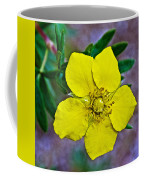 Shrubby Cinquefoil On Iron Creek Trail In Sawtooth National Wilderness Area-idaho  Coffee Mug
