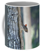 Shy Squirrel Coffee Mug