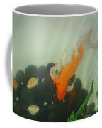 Siamese Fighting Fish 1 Coffee Mug