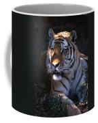 Siberian Tiger Executive Portrait Coffee Mug