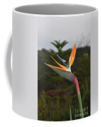 Side View Of A Beautiful Bird Of Paradise Flower  Coffee Mug