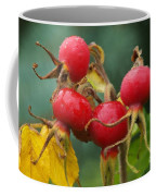 Signs Of Fall 2 Coffee Mug