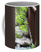 Signs Of Spring In American Fork Canyon Utah Coffee Mug