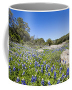 Signs Of Spring In Texas Coffee Mug