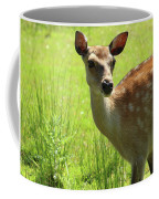Sika Deer Omagh Coffee Mug