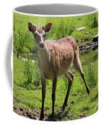 Sika Deer Water Hole Omagh Coffee Mug