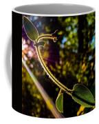 Silhouette Of Climbing Vine On A Sunny Afternoon Coffee Mug
