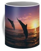 Silhouette Of Two Bottlenose Dolphins Coffee Mug