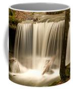 Silken Waterfall Coffee Mug