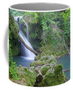 Silky Waterfall Coffee Mug