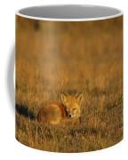 Silly Fox Coffee Mug