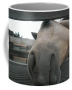 Silly Horse Coffee Mug