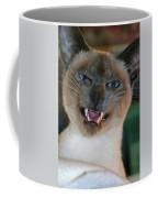 Silly Sadi Smiling Coffee Mug