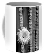 Silver Desert Jewel Coffee Mug
