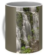 Silverdale Falls 2 Coffee Mug