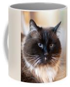 Simon Cat Coffee Mug
