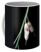 Simplicity II Coffee Mug