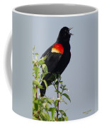 Sing Your Heart Out Coffee Mug