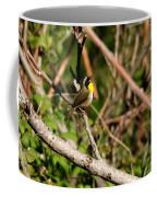 Singing Bandit Coffee Mug