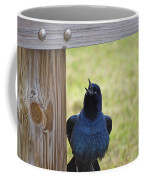 Singing Grackle Coffee Mug