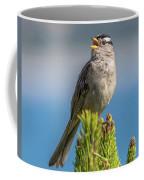 Singing Sparrow Coffee Mug