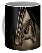 Single Bat Hanging Portrait Coffee Mug