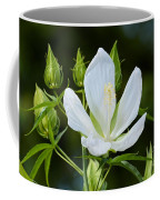 Single Bloom Coffee Mug