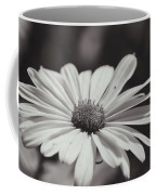 Single Daisy Bw Coffee Mug