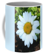 Single Daisy Coffee Mug