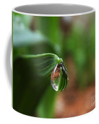 Single Drop Of Rain Water  Coffee Mug