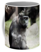 Single Macaque Monkey Sitting Coffee Mug