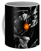 Single Orange Berry Coffee Mug