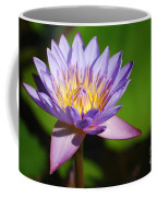 Single Purple Water Lily Number One Coffee Mug