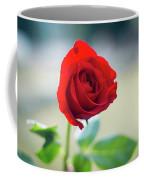 Single Red Rose Coffee Mug