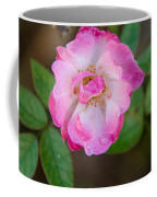 Single Rose 2 Coffee Mug